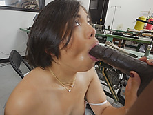 Black Rod Fucking Tight Asian Hottie Interracial