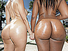 Big ass Diamond Kitty and Cherie Magic