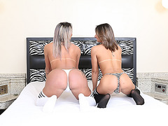 Two glamour shemales fucking each asses